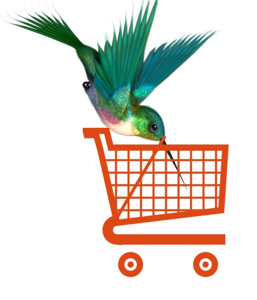 hummingbird-vs-ecommerce
